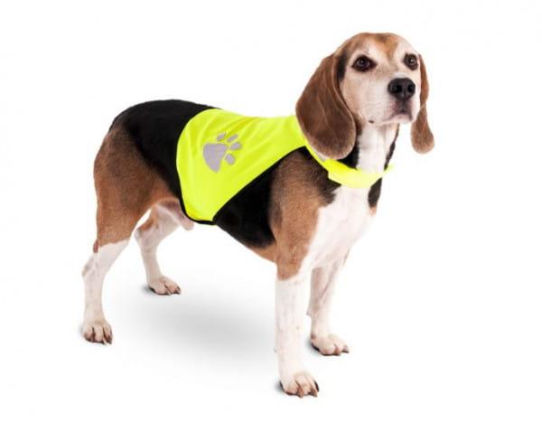 Karlie Sicherheitsweste Night Walk für Hunde