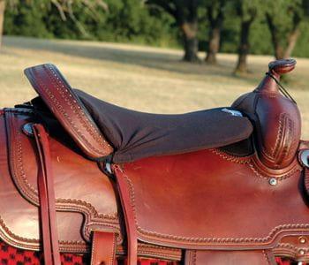 Cashel Western Long Tush Cushion