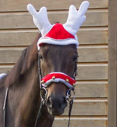 Christmas Rentier Ohrenhaube