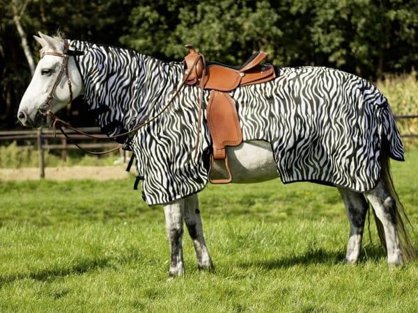 Free Rider Anti Fly Ausreitdecke Zebra