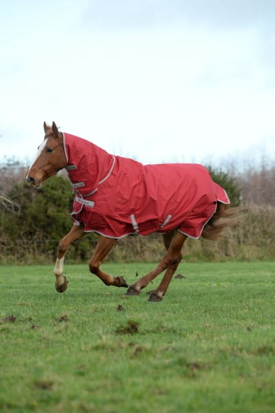 Bucas Freedom Turnout Full Neck 150G Regendecke
